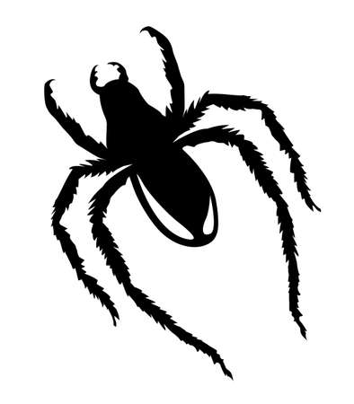 vector silhouette spider on white background