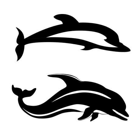 vector two dolphins on white background Vector