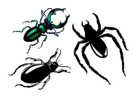 vector silhouette bug on white background Vector