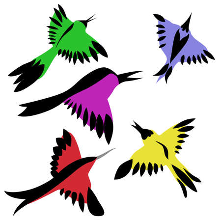 vector drawing of the decorative birds on white background