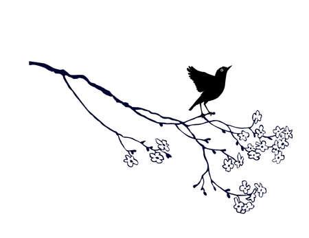 tomtit: vector bird on branch on white background