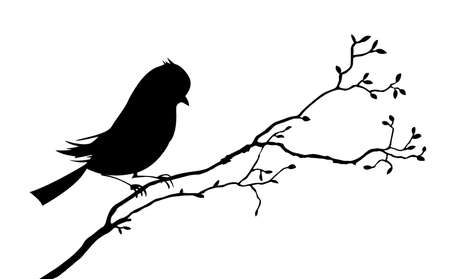 sparrows: vector bird silhouette on white background, vector illustration