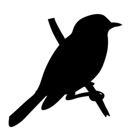 sylwetka ptaka wektor na białym tle, ilustracji wektorowych