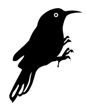 wektor sylwetka ptaka na białym tle, ilustracji wektorowych