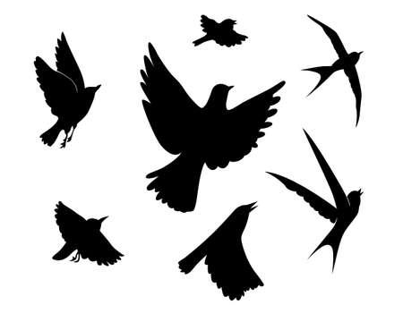tragos: los p�jaros que vuelan sobre la silueta ilustraci�n vectorial de fondo blanco,