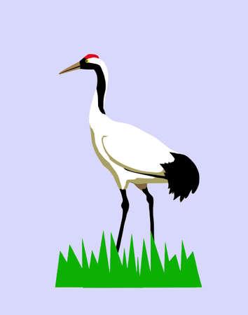 crane bird: vector drawing of the crane on turn blue background Stock Photo
