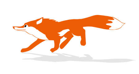 quick drawing: vector illustration of the fox