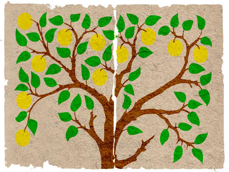 aple: aple tree on grunge background