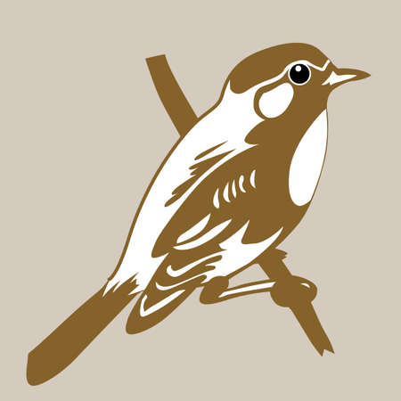 bird silhouette on brown background, vector illustration Vector