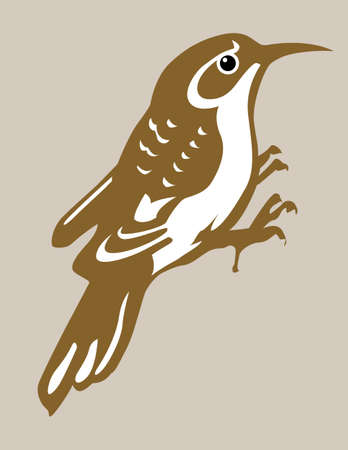 nuthatch silhouette on brown background, vector illustration Vector