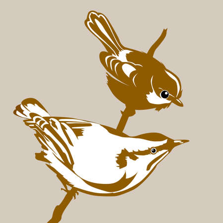 pajaro  dibujo: aves silueta en la ilustración de fondo marrón vector,