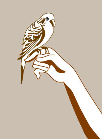 parrot silhouette on brown background, vector illustration Vector