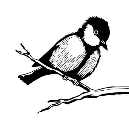 bird on branch silhouette on white background, vector illustration