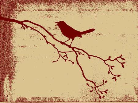 bird silhouette on grunge background, vector illustration Vector
