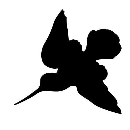 pantanos: becada silueta sobre fondo blanco, ilustraci�n vectorial