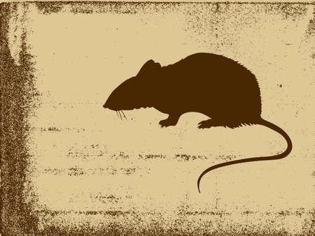 rat silhouette su sfondo grunge, illustrazione vettoriale Vettoriali