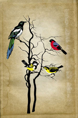boom met vogels: vogels op boom op grunge achtergrond