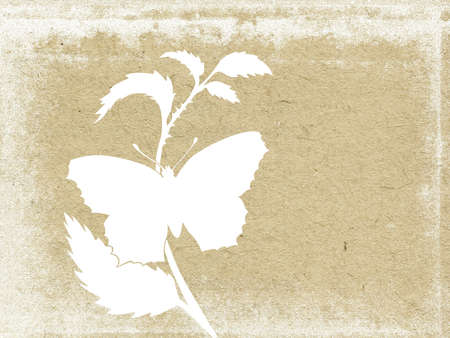 butterfly on grunge background photo