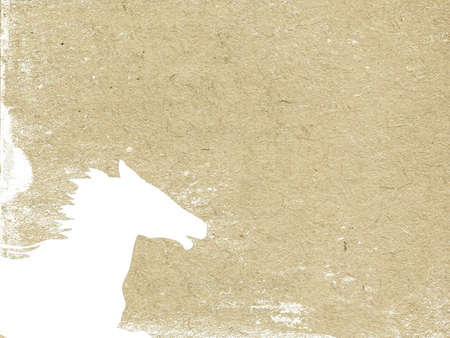 horse head on grunge background photo