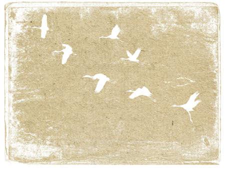 flying crane on grunge background photo