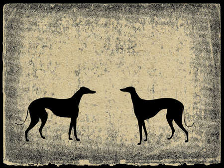 illustration greyhound on grunge background illustration