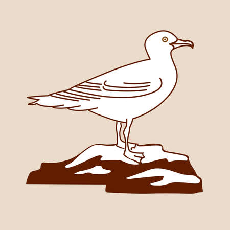 sea bird: sea gull silhouette on brown background