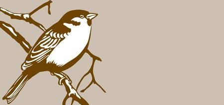 bird silhouette on brown background Vector