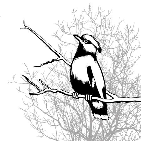 bird silhouette on wood background Vector