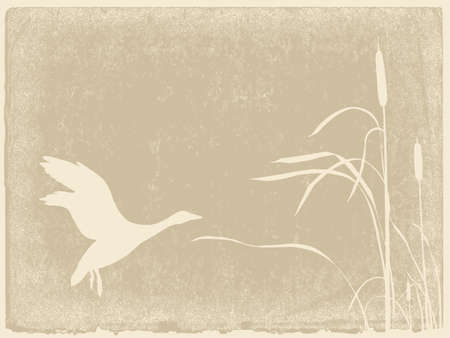 bulrush: duck silhouette on yellow background Illustration