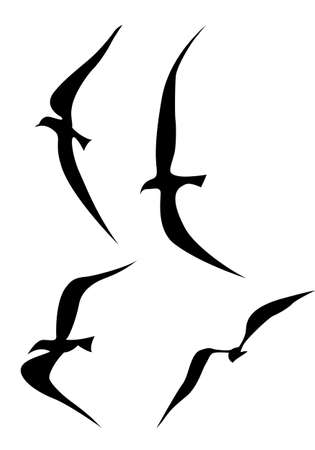albatross: flying birds silhouette on white background, vector illustration Illustration
