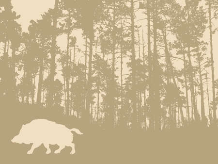 wild boar silhouette on wood background   Vector