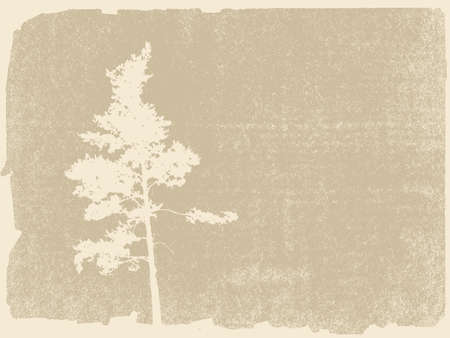 pine silhouette on grunge background Stock Vector - 12247019