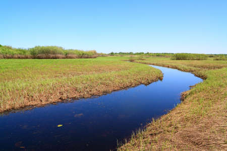 small river on spring field photo