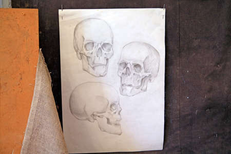 skull drawing on grunge background