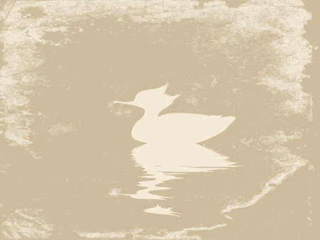 duck in water on grunge background, vector illustration