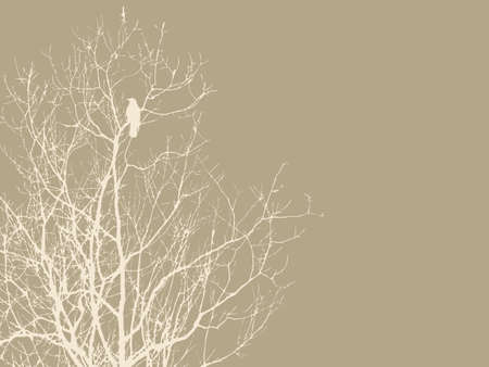 crow on branch on brown background, vector illustration Vector