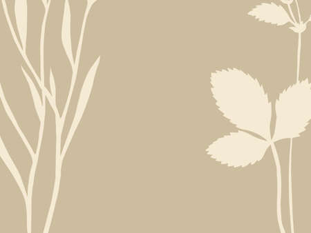 herb and sheet on brown background, vector illustration