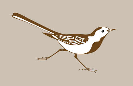 tomtit: wagtail silhouette on brown  background, vector illustration