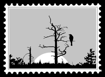 silhouette of the bird on tree on postage stamps, vector illustration Vector