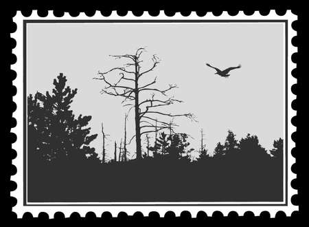 silhouette of the bird on postage stamps, vector illustration Vector