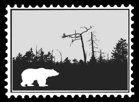 silhouette bear on postage stamps, vector illustration Vector