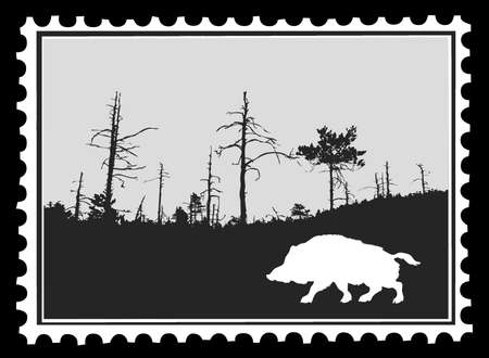 wild nature wood: silhouette wild boar on postage stamps, vector illustration