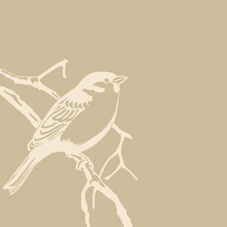 bird silhouette on old paper, vector illustration Stock Vector - 12490080