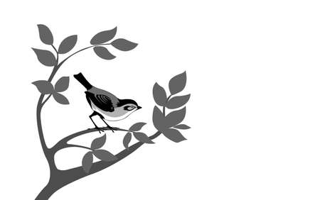 wagtail: bird silhouette on wood branch, vector illustration Illustration