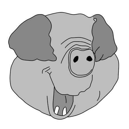 piglet head on white background, vector illustration Vector