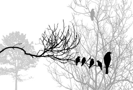 line drawing: birds silhouette on wood branch, vector illustration
