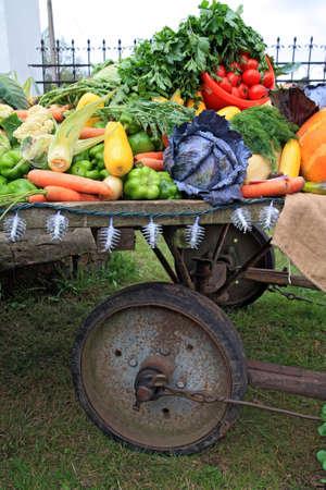 set vegetables on rural market photo