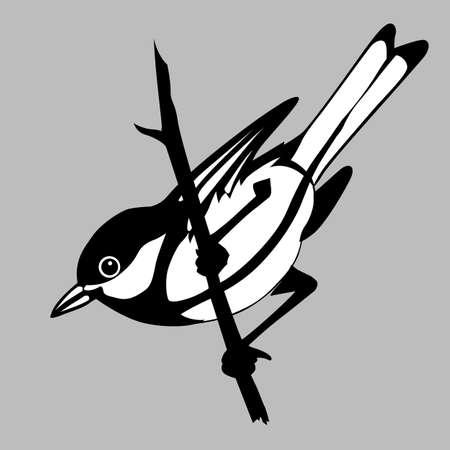 bird silhouette on gray background, vector illustration Stock Vector - 12880503