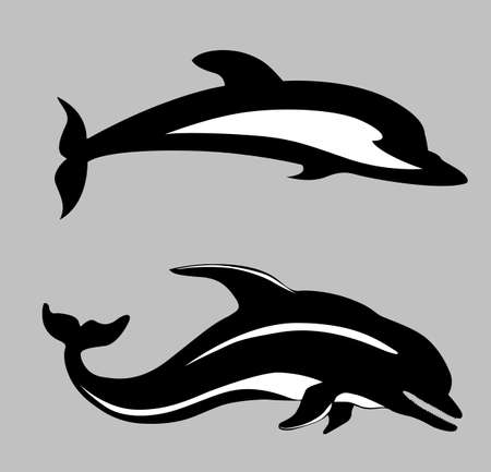 two dolphins on gray background, vector illustration Stock Vector - 12880496