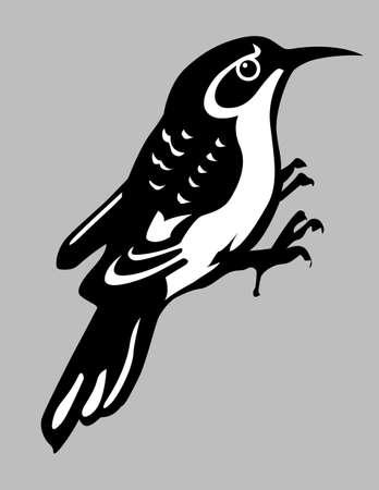 black beak: nuthatch silhouette on gray background, vector illustration Illustration
